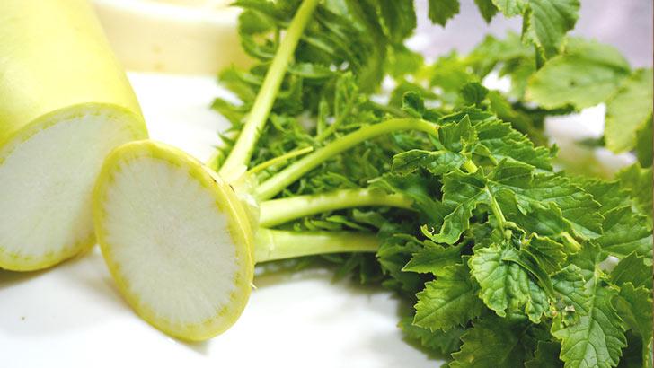 大根の葉(大根菜)イメージ