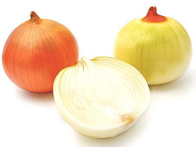 玉葱(タマネギ)イメージ