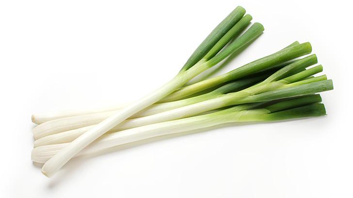 長葱(白ネギ/根深ねぎ)のイメージ画像:食べ物辞典トップ用
