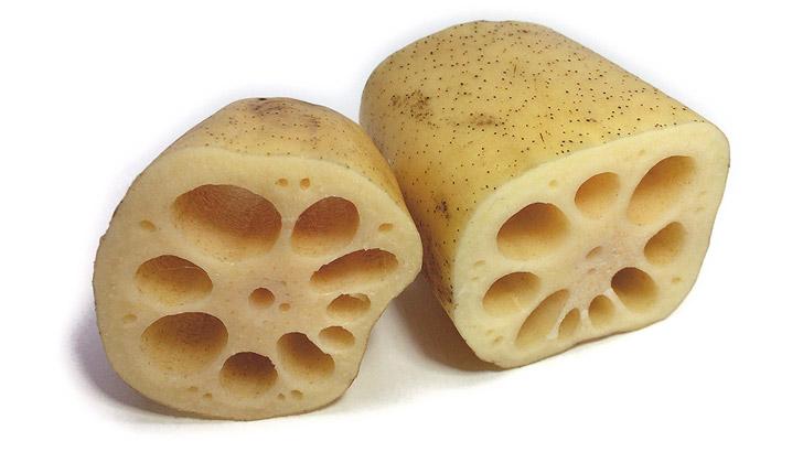 蓮根/レンコンのイメージ画像:食べ物辞典トップ用