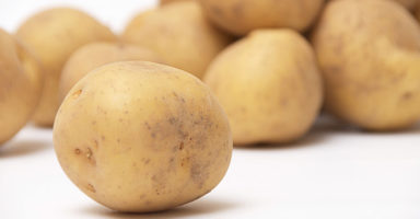 ジャガイモのイメージ画像:食べ物辞典トップ用