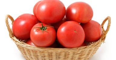 トマトのイメージ画像:食べ物辞典トップ用