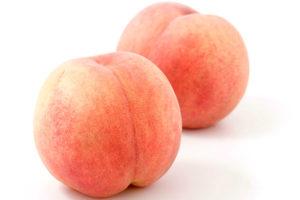桃/モモのイメージ画像:食べ物辞典トップ用