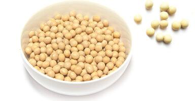 大豆のイメージ画像:食べ物辞典トップ用(slowbeauty)