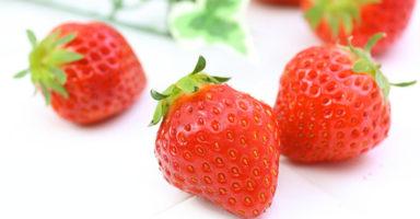 イチゴ/苺のイメージ画像:食べ物辞典トップ用