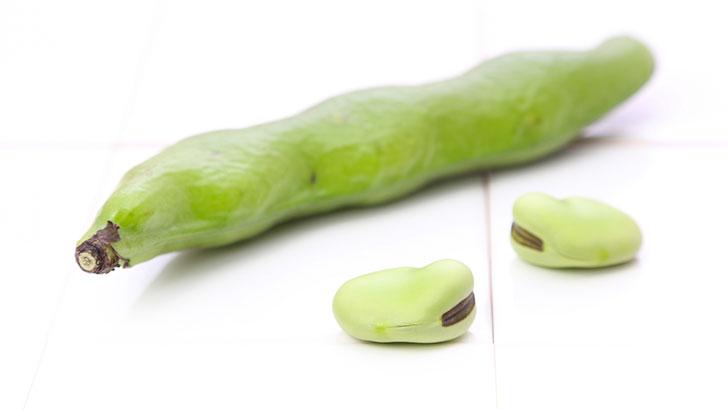 そら豆のイメージ画像:食べ物辞典トップ用(slowbeauty)