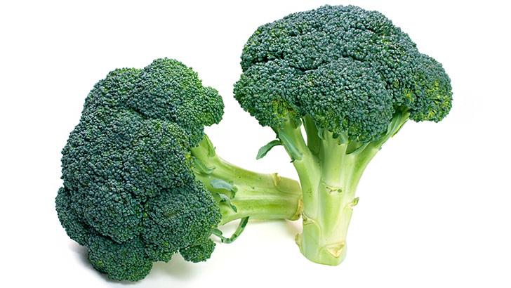 ブロッコリーのイメージ画像:食べ物辞典トップ用