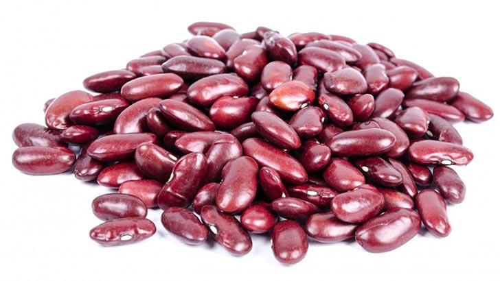 いんげん豆/金時豆のイメージ画像:食べ物辞典トップ用