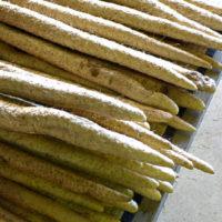 山芋(自然薯)イメージ
