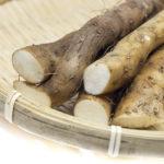 自然薯/山芋のイメージ画像:食べ物辞典トップ用