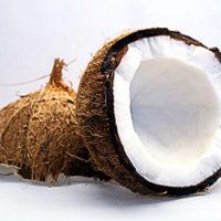 ココナッツ(ココヤシの実)イメージ
