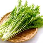 水菜/京菜