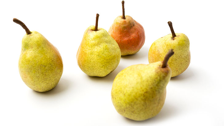 西洋梨のイメージ画像:食べ物辞典トップ用