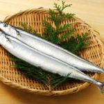 秋刀魚(サンマ)イメージ