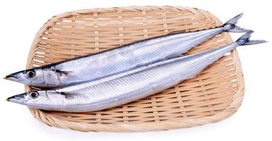 サンマ/秋刀魚のイメージ画像:食べ物辞典トップ用
