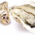 牡蠣(カキ)のイメージ画像:食べ物辞典トップ用