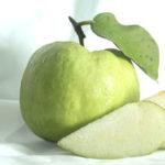 グァバのイメージ画像:食べ物辞典トップ用