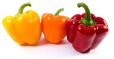 パプリカのイメージ画像:食べ物辞典トップ用