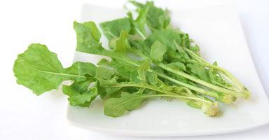 ルッコラのイメージ画像:食べ物辞典トップ用