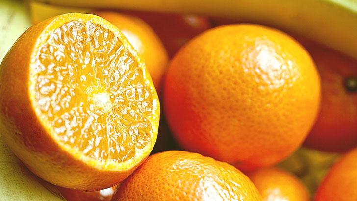 オレンジのイメージ画像
